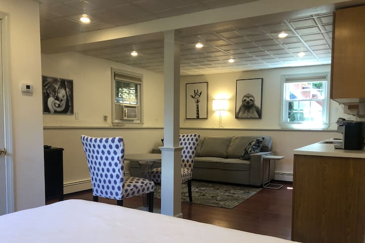 """bottom level: studio suite w/ full kitchenette, queen bed, couch (converts to queen pullout bed), 40"""" HDTV, full bathroom, and washer/ dryer, private entrance to garage"""