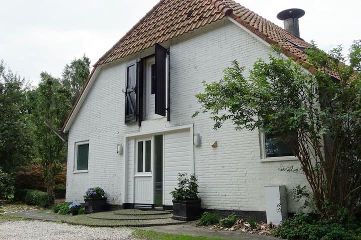Bosslag vakantiehuis nabij Lemmer - Rutten - Dom