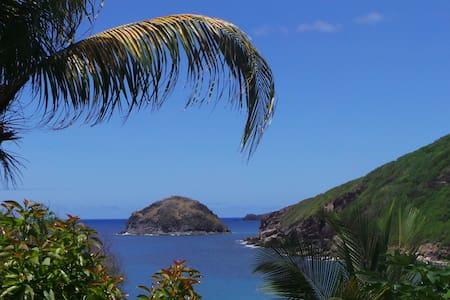 Location d'un studio aux Saintes à Anse Figuier