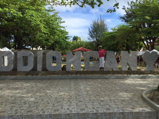 Penthouse in Odiongan. Walk to beach or town center!