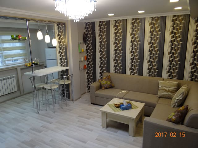 Apartment on Ali Valiyev 9 - Bakı - Appartement