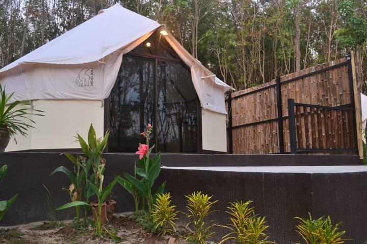 Camp Hadee, Tent . Koh Yao Noi.