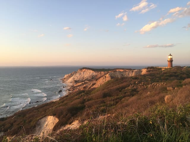 Blueberry Hill - Aquinnah
