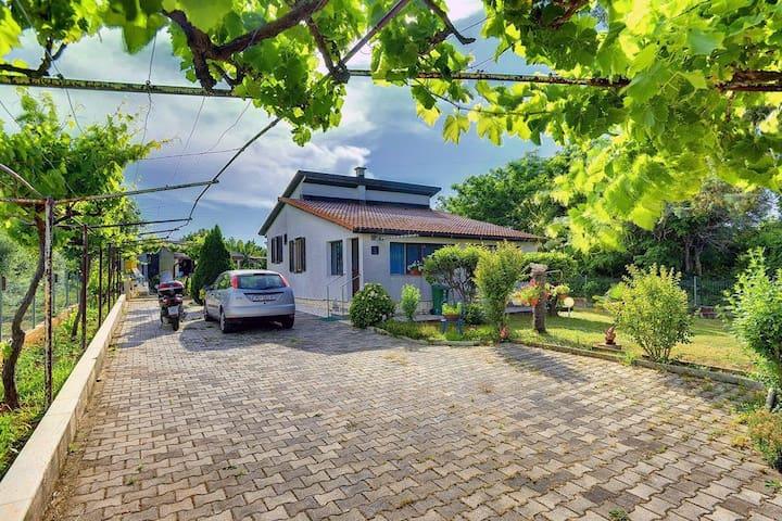 Dům Casa Silvana (73796-K1)