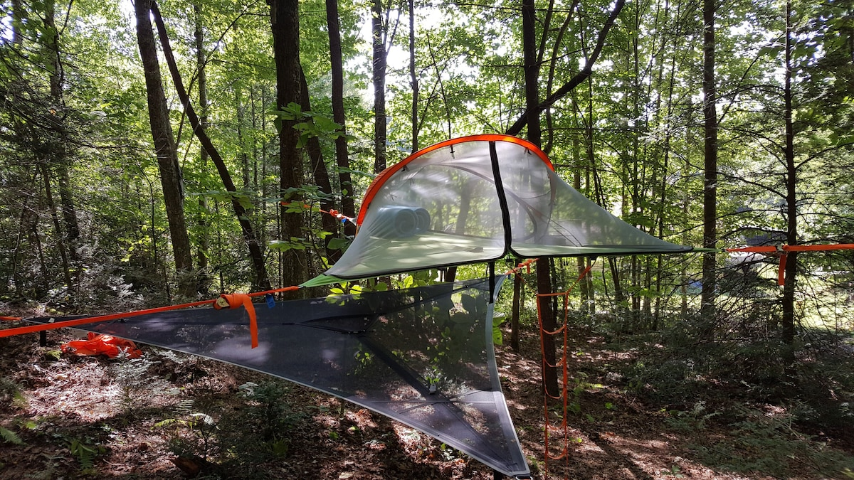 ... Connect 2 Person Tree Tent - Rainfly removed with included Tentsile hammock underneath & Sleep under the Stars in a Tree Tent w/ Hammock! - Tents for Rent ...