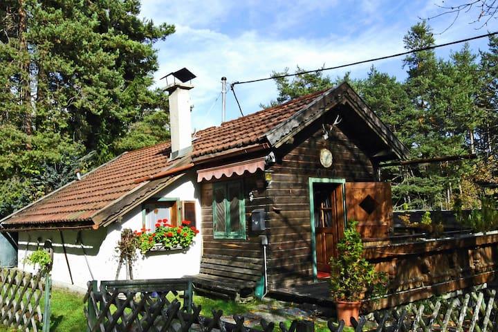 Casa unifamiliar rodeada de bosques.