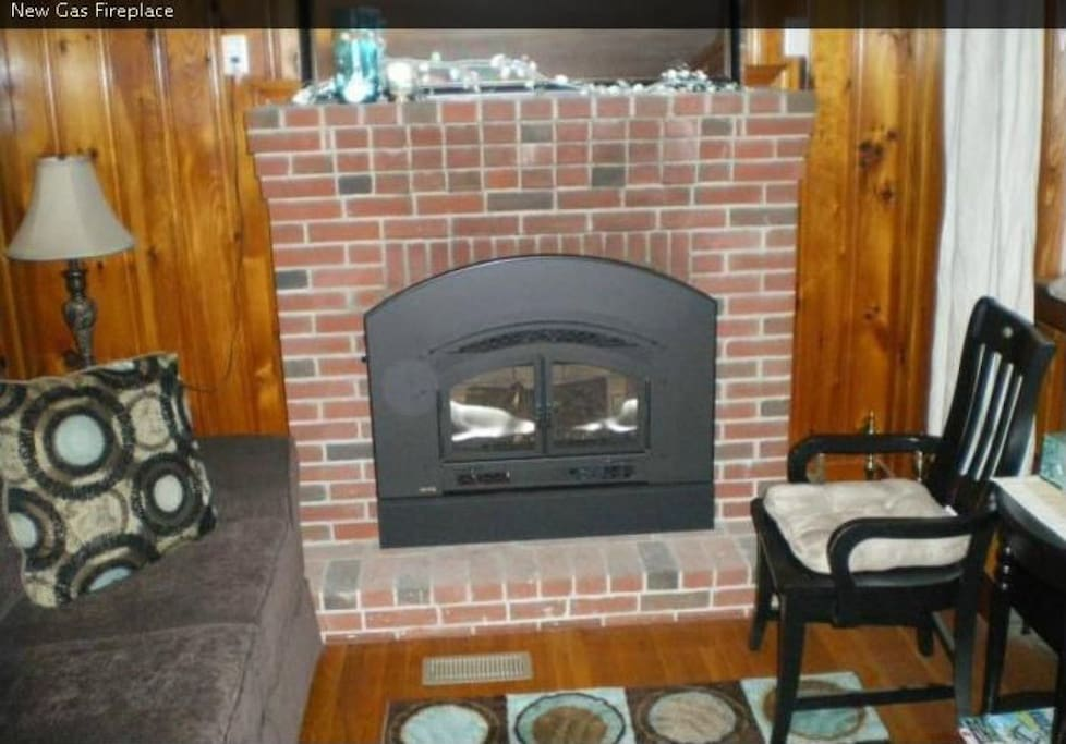 Remote Controlled Gas Fireplace