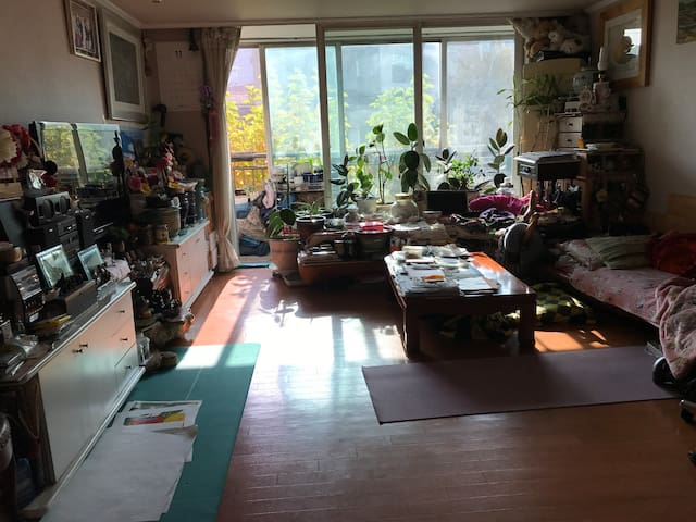 Single room in Gangnam