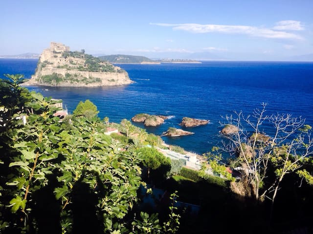 wonderful house for your holidays - Ischia - Rumah
