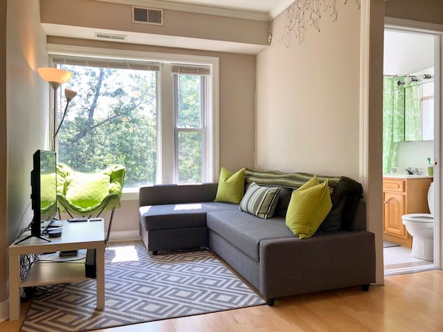 Bright 1 BR in heart of Lakeview(Boystown/Wrigley)