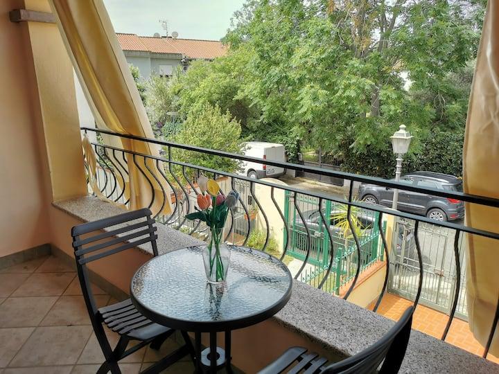 Pula, Appartamento in centro IUN P1703