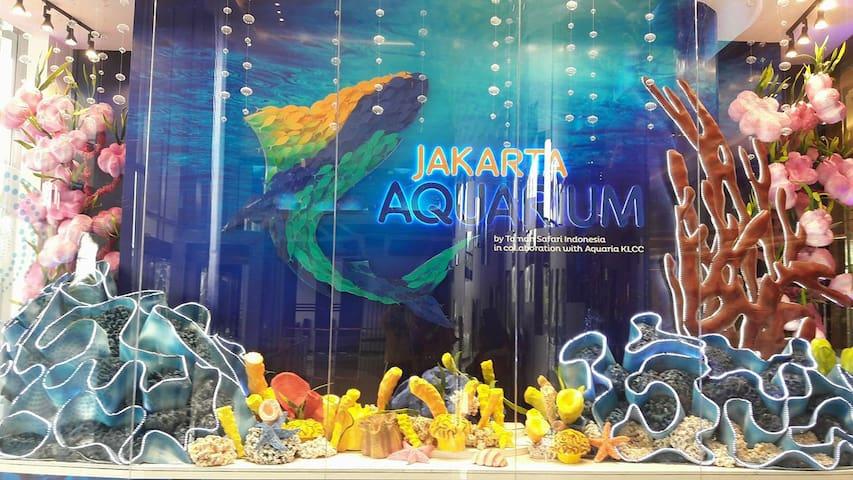 Biggest Aquarium at Jakarta (Neo Soho Mall)