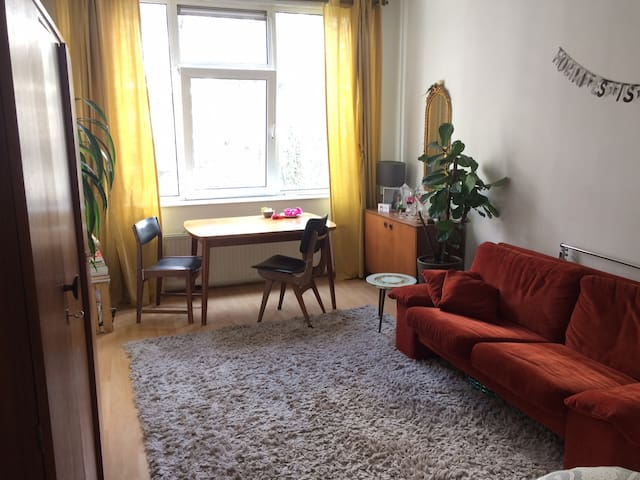 Cosy studio - Quiet area in heart of Rotterdam - Rotterdam - Řadový dům