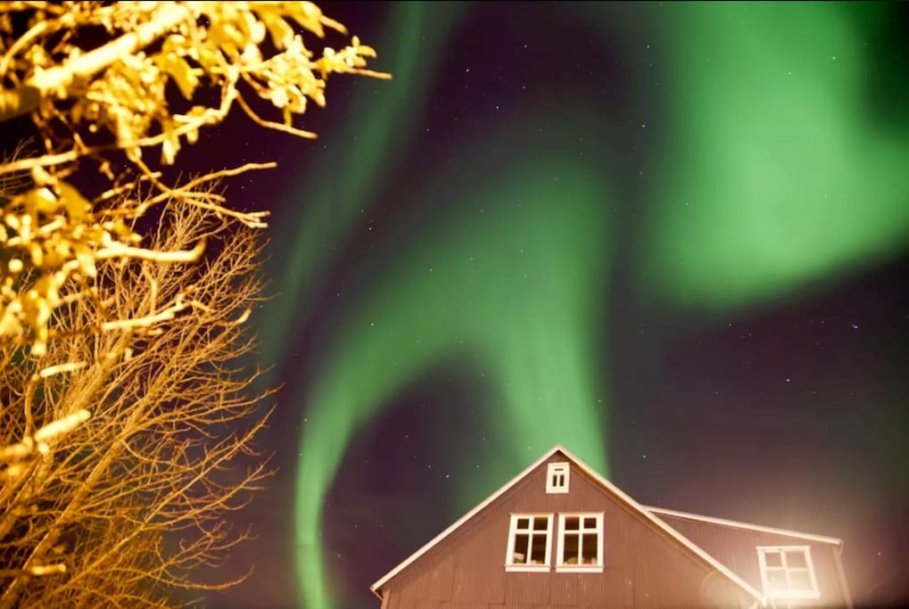 Northern lights during wintertime