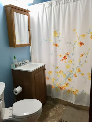 Private bedroom in small & cozy home! - Minneapolis - Hus