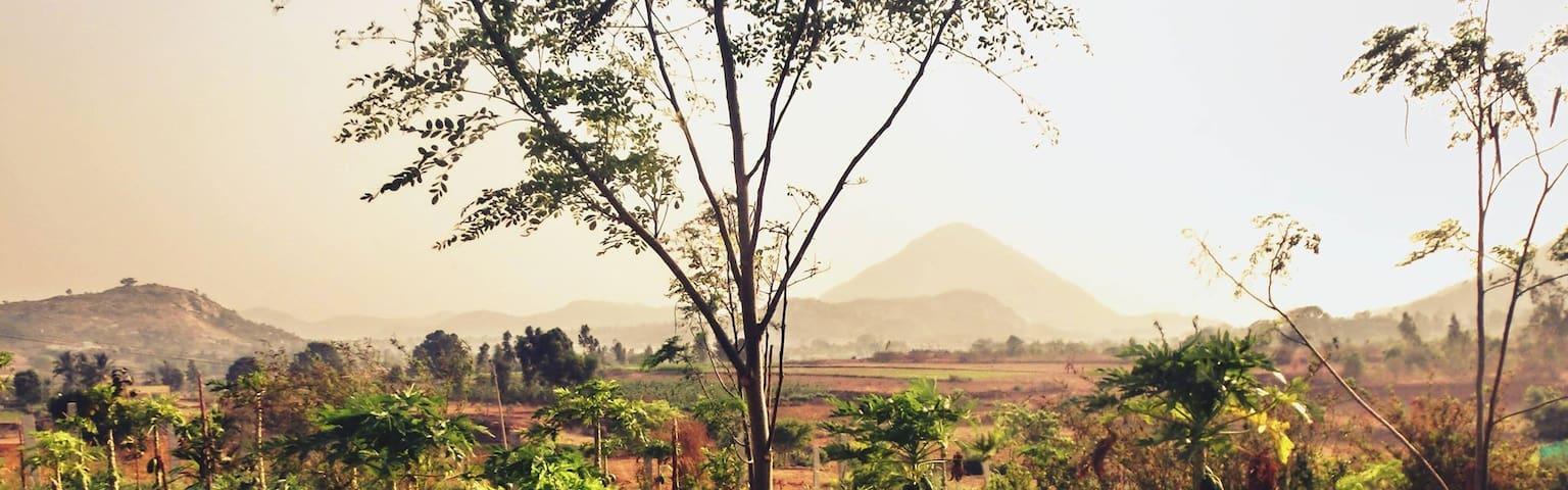 Maya Vadi - Nandi Hills