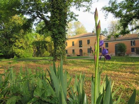 Indelli house