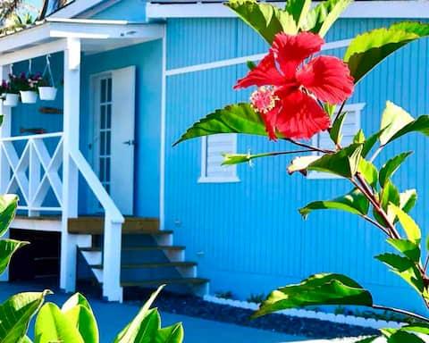 Tropical Private Beach Studio Surf~Explore~Relax