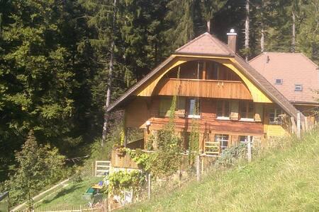 Accommodation at self-sustaining, organically farm - Eriz - Casa