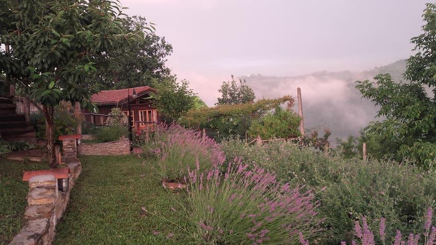Romantico chalet con vista - Paroldo - Cabin