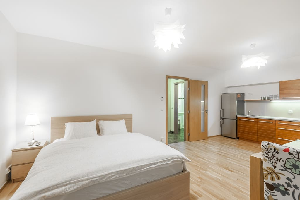 Quiet and luxury apartment apartments for rent in prague for Designer apartment prague