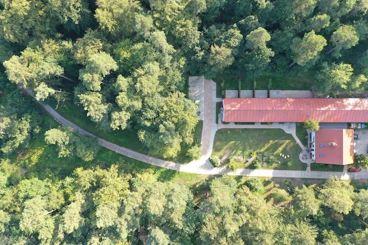 Agroturystyka w Lesie Gdansk - Dzierżążno