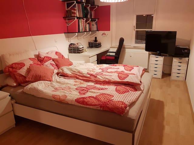 Gemütliche Wohnung im Leipziger Westen