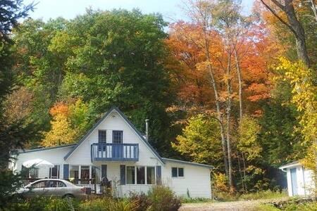 Cottage in Algonquin Highlands, ON - Algonquin Highlands