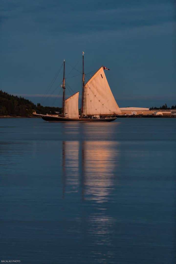 The Bluenose if in port