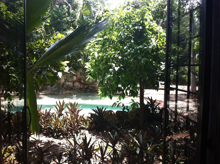 View of pool from inside Villa Ha