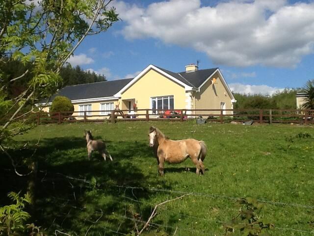 Farm House Country Break near Tulla