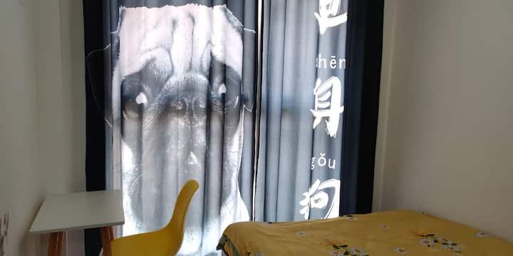 浪迹天涯森森公寓单身狗特价单间