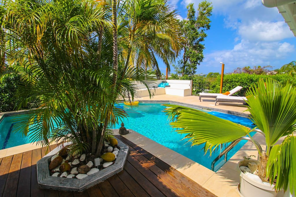 Lush garden by the pool