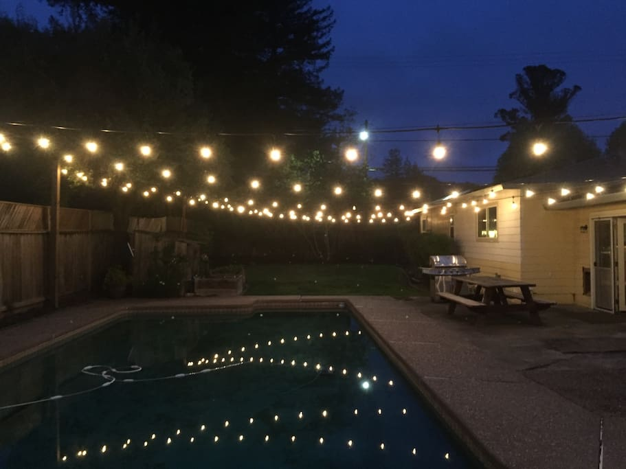 Lights across the backyard.