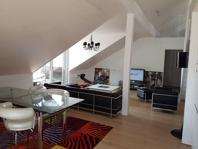 Grand appartement moderne, 4 ch., 10 mn Lausanne - Mex - Apartment