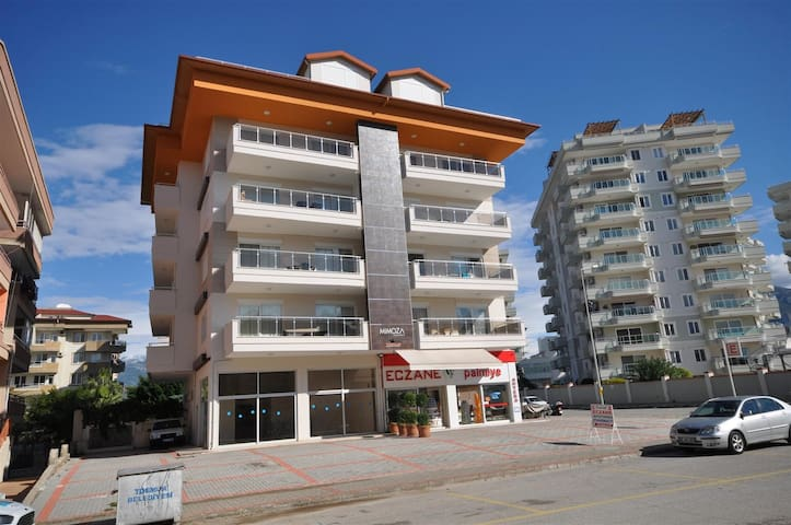 Fully furnished 1+1 for a rent in Tosmur/Alanya