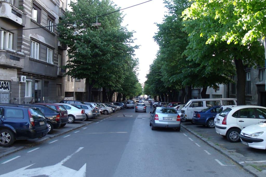 Street prospect