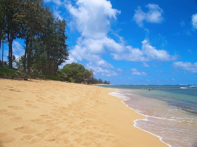 Oceanfront Resort Steps to Beach - Kapaa - Appartement en résidence
