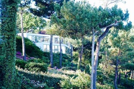 Villa vue d'exception sur le Belon - Moëlan-sur-Mer - Villa