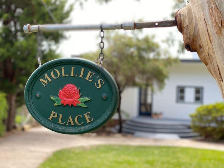 Mollie's Place