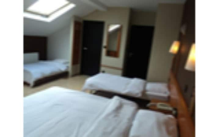 Quintuple room (2 double beds + 1 single bed or 1 double bed and 3 single beds)