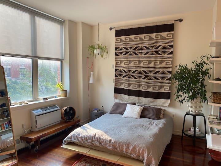 2 bed 2 bath with balcony near Central Park/Harlem