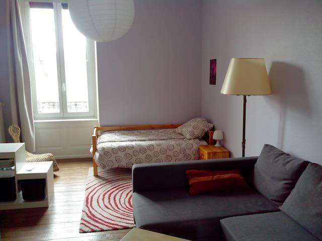 Appart vaste et sympathique au coeur de Belfort - Belfort - Appartement