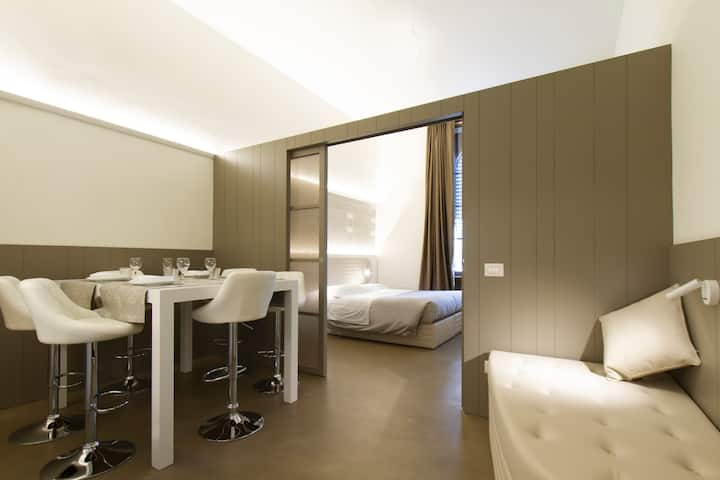 luxury 2 rooms apartments completely renovated