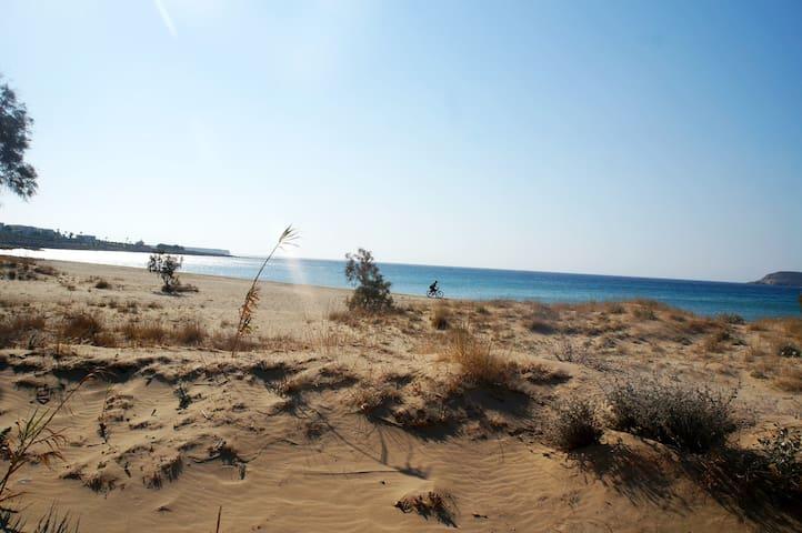 Studios on the beach - Chrisi Akti - Konukevi