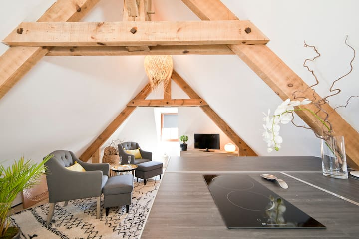 LOVELY AND EQUIPPED  LOFT WITH AIR CONDITIONING - Sarlat-la-Canéda - Apartment