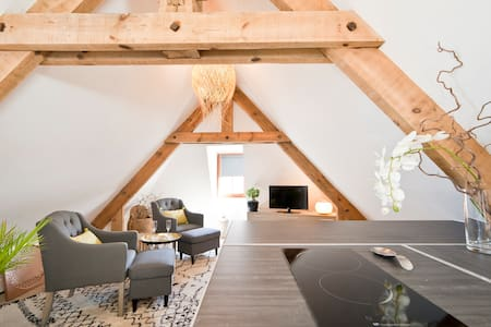 LOVELY AND EQUIPPED  LOFT WITH AIR CONDITIONING - Sarlat-la-Canéda - Apartament