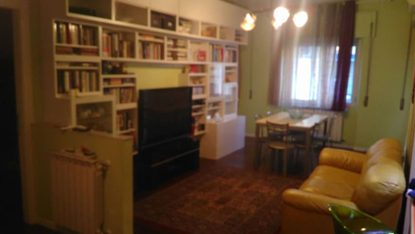 suitable for couples to families with max 2 childr - Catania - Wohnung