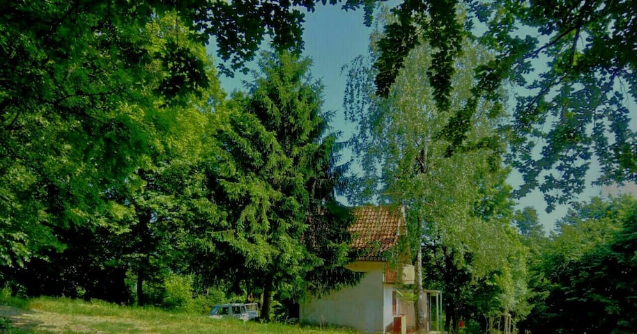 Mountain Forest Cottage Seličevica