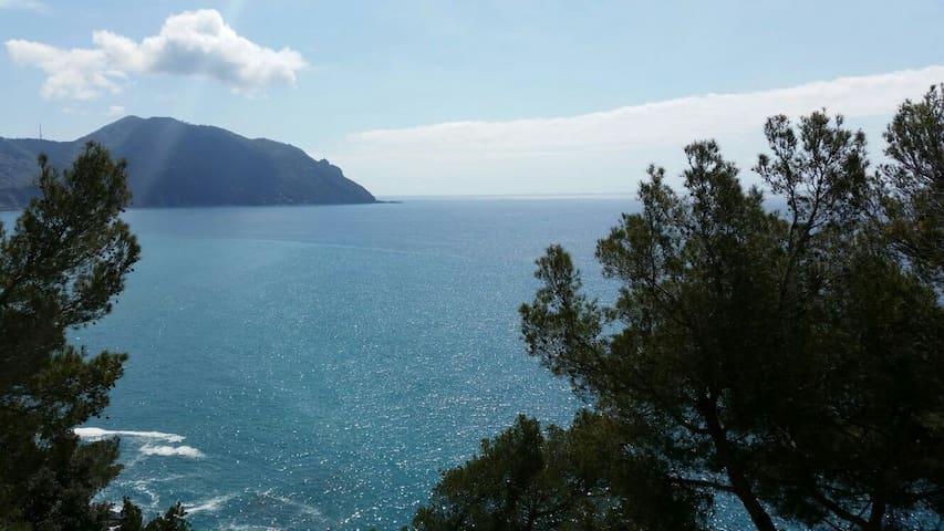 Scogliera di Sori a picco sul mare - Sori